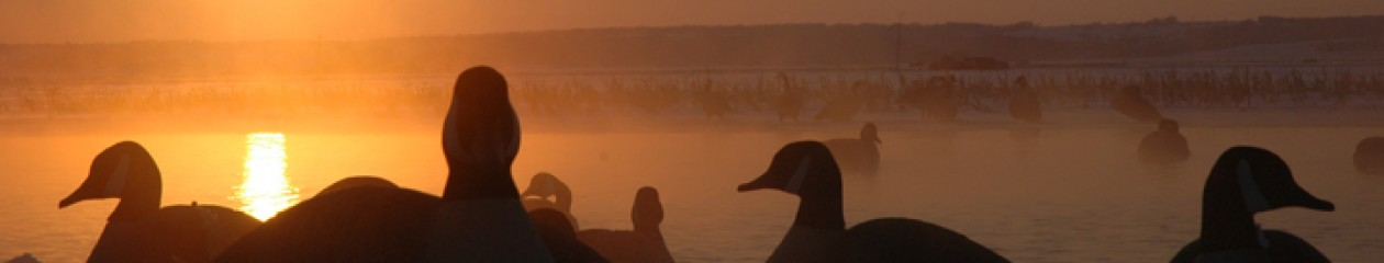 Squaw Creek Hunt Club – Mound City, Missouri – Fully Guided Duck Hunts- Ducks, Canada Geese, Snow Geese – All Inclusive – Lodging – 855-473-2875